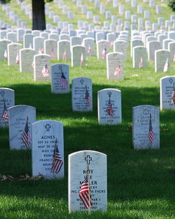 Graves at Arlington (photo wikipedia)