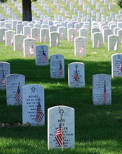 Graves at Arlington (photo wikipedia)